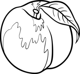 peach illustration for coloring book