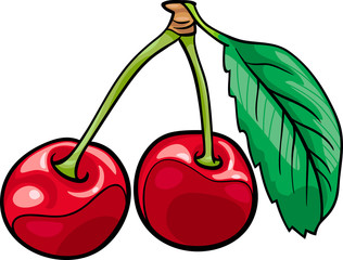 cherry fruits cartoon illustration