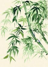 Green Bamboo, peint à l'aquarelle dans un style oriental