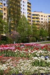 Blumenflächen im Wohnviertel