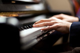 Fototapety Pianist playing music