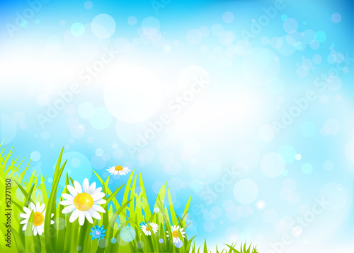 Summer background with flowers and grass