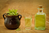 Peppermint plant, bottle and shot on wooden background
