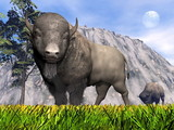 Bisons in the nature - 3D render