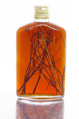 Homemade herbal liqueur on white background
