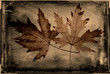 Grunge autumn leaves background with dirty vintage texture