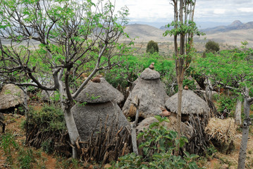 Thatched roof huts of the Konso people (Ethiopia)