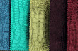 luxury crocodile texture or background in various colors