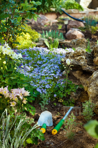 Gardening tools near phlox subulate