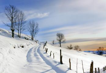 Paisaje nevado (Valles Pasiegos,Cantabria)