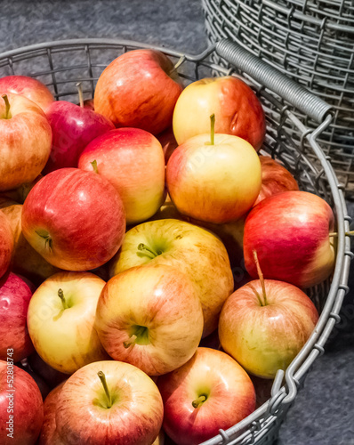 Harvested red and yellow apples in steel basket.