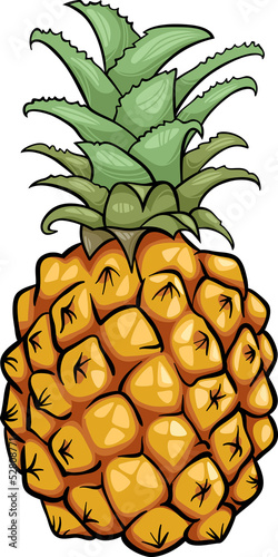 pineapple fruit cartoon illustration