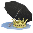 Umbrella covers the gold crown