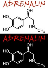 130527-Adrenalin_d
