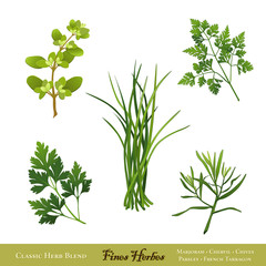 Fines Herbes: Marjoram Chervil, Chives Parsley, French Tarragon