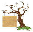 Sign Tree Illustration