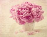 Peony flowers - 52838569