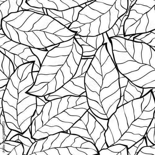 树叶漩涡生态学秋天秋季纹理线织物背景自然花叶艺术装饰设置设计赛季