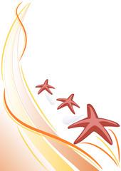 sfondo stelle marine e conchiglie