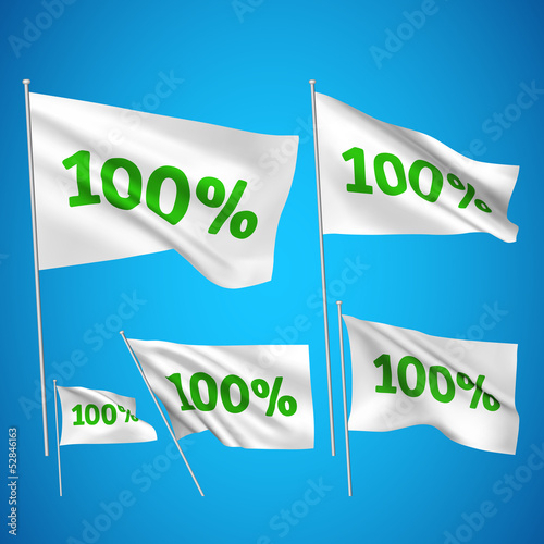 100 percents - white vector flags