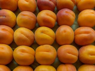 Albicocche (Prunus Armeniaca)