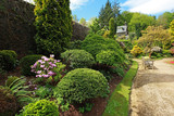 Beautiful spring garden with buxus