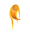 Basketball on fire logo vector