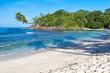 reflets de cocotiers sur plage des Seychelles