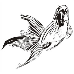 scud goldfish outline sketch vector