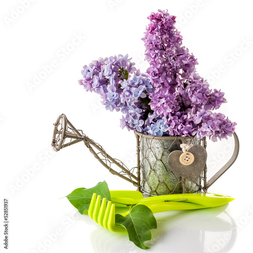 Bouquet of lilac and garden tools for gardening