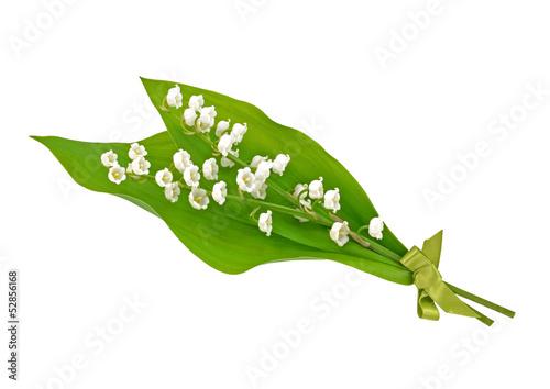 Staande foto Lelietje van dalen Lily of the Valley Posy