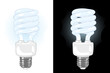 Vector energy saving light bulb on white and black bakgrounds