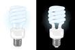 Vector energy saving light bulb on white and black bakgrounds