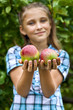 Young girl in an apple orchard