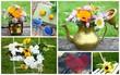 composition floral, bouquet champêtre d'été