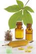 Phytothérapie & Médicaments naturels