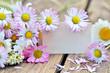 Liebe Grüße: Gutschein mit Gänseblümchen