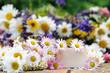 Liebe Grüße: Gutschein mit Gänseblümchen und Wiesenblumen
