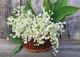Fototapety Basket with lilies of the valley (Convallaria majalis)