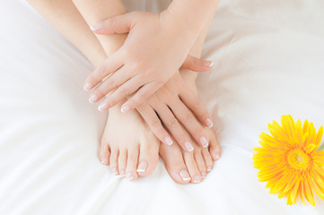Woman's hands and feet after a beauty treatment