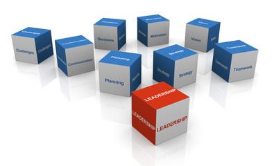 3d leadership cube