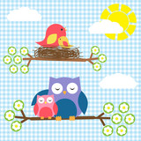 Fototapety Two families - birds and owls