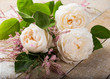 Pastel roses on wooden background
