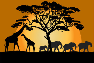 Savannah landscape with animals