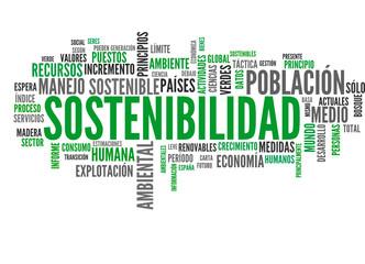 Sostenibilidad (sostenible, recursos, tagcloud español)