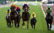 Horse Racing - 52899590