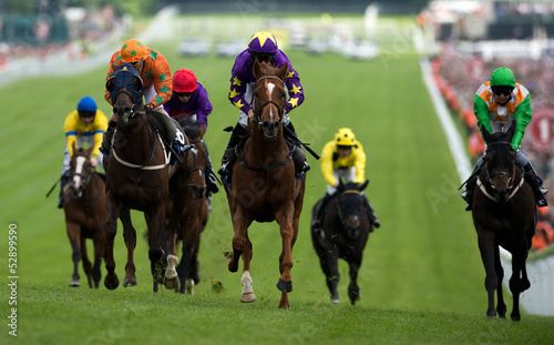 Foto op Aluminium Paardensport Horse Racing