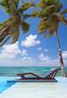 piscine zen sous les cocotiers