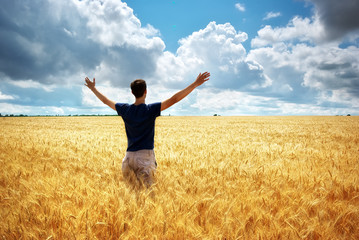 Man in meadow of wheat