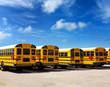American school bus row under blue sky - 52906384